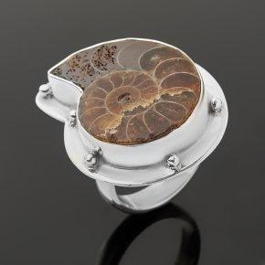 Кольцо окаменелость Мадагаскар (серебро 925 пр.) (регулируемый) размер 18