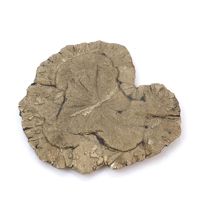 Образец пирит США S (4-7 см)