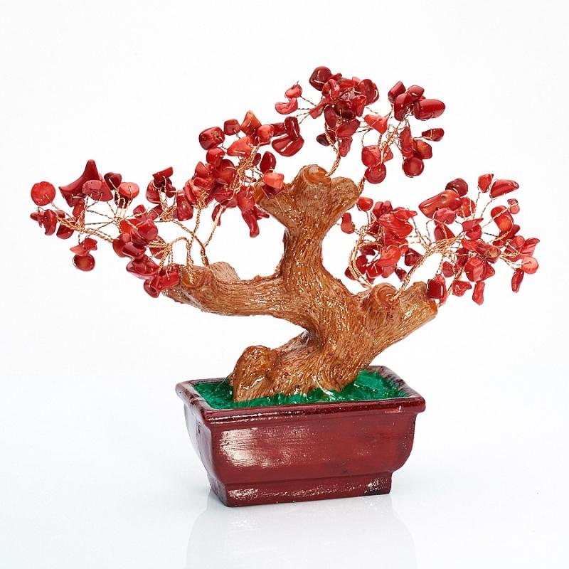 Дерево счастья коралл красный Индонезия 15 см
