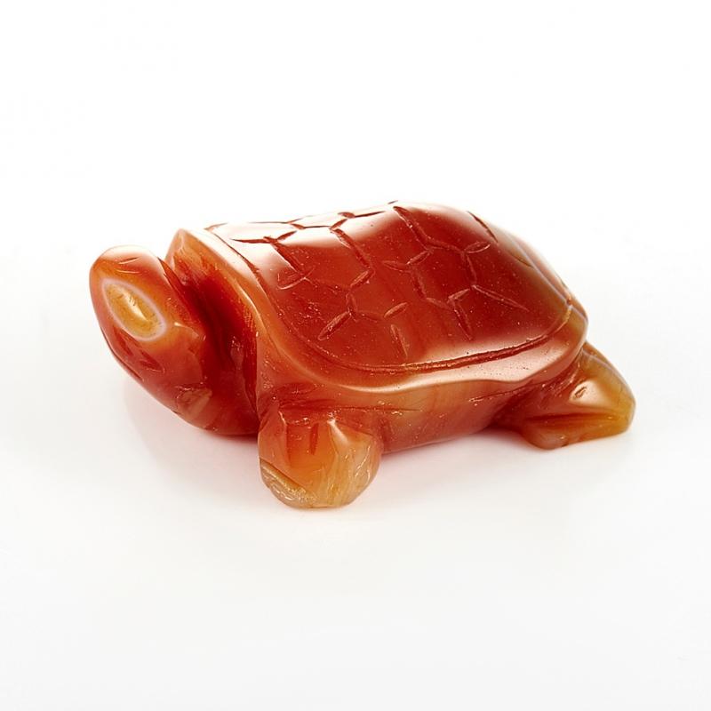 Черепаха сердолик  5 см