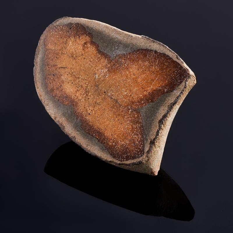 Срез глендонит (беломорская рогулька)  S