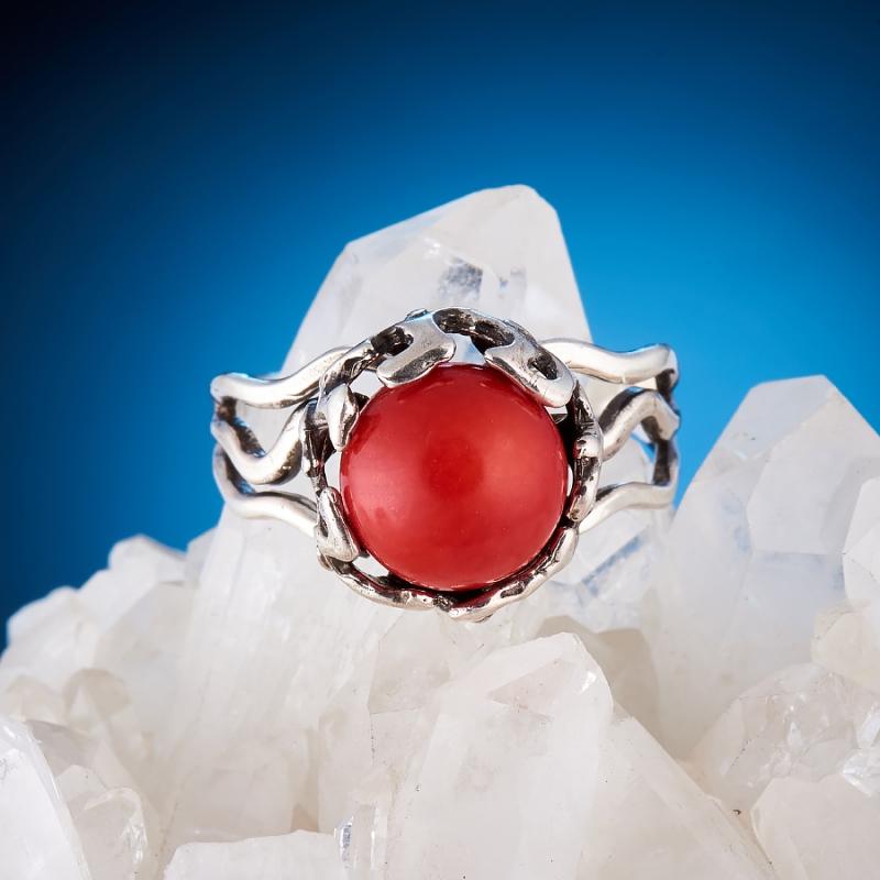 [del] Кольцо коралл красный Индонезия (серебро 925 пр.)  размер 16