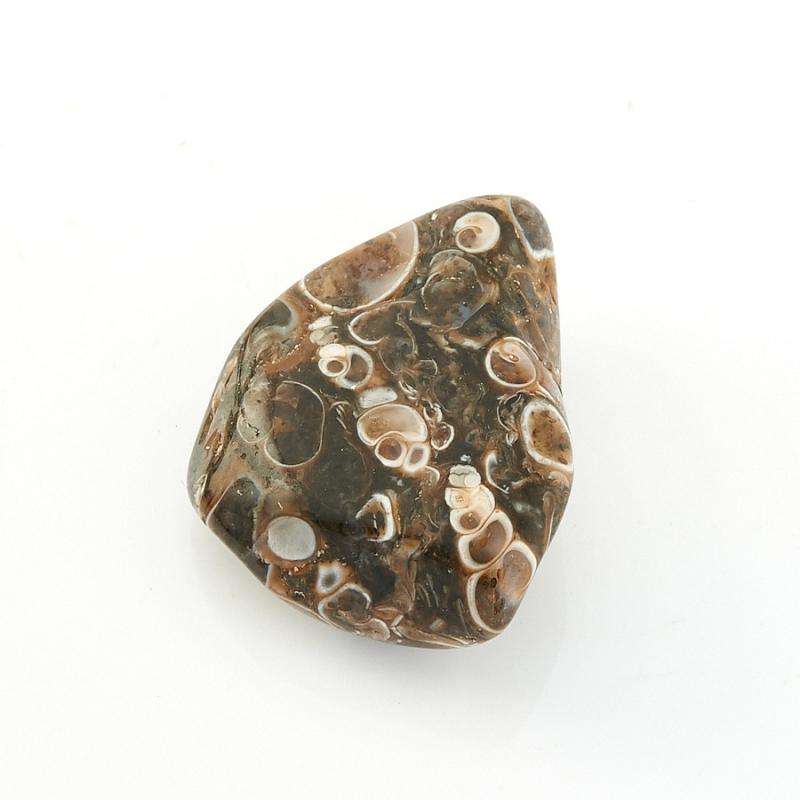 Галтовка агат черепаховый США (2-2,5 см) (1 шт)