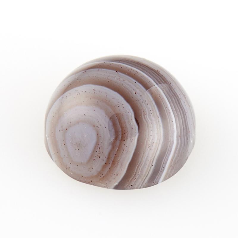 Кабошон агат серый Ботсвана 8 мм